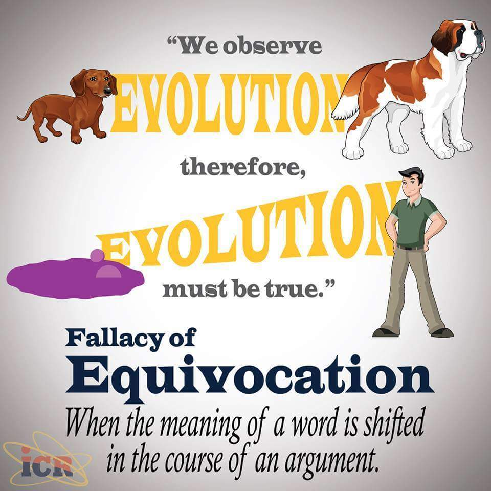 Equivocation 43