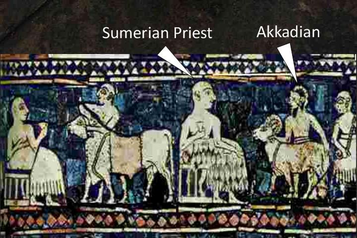Sumerians Priest